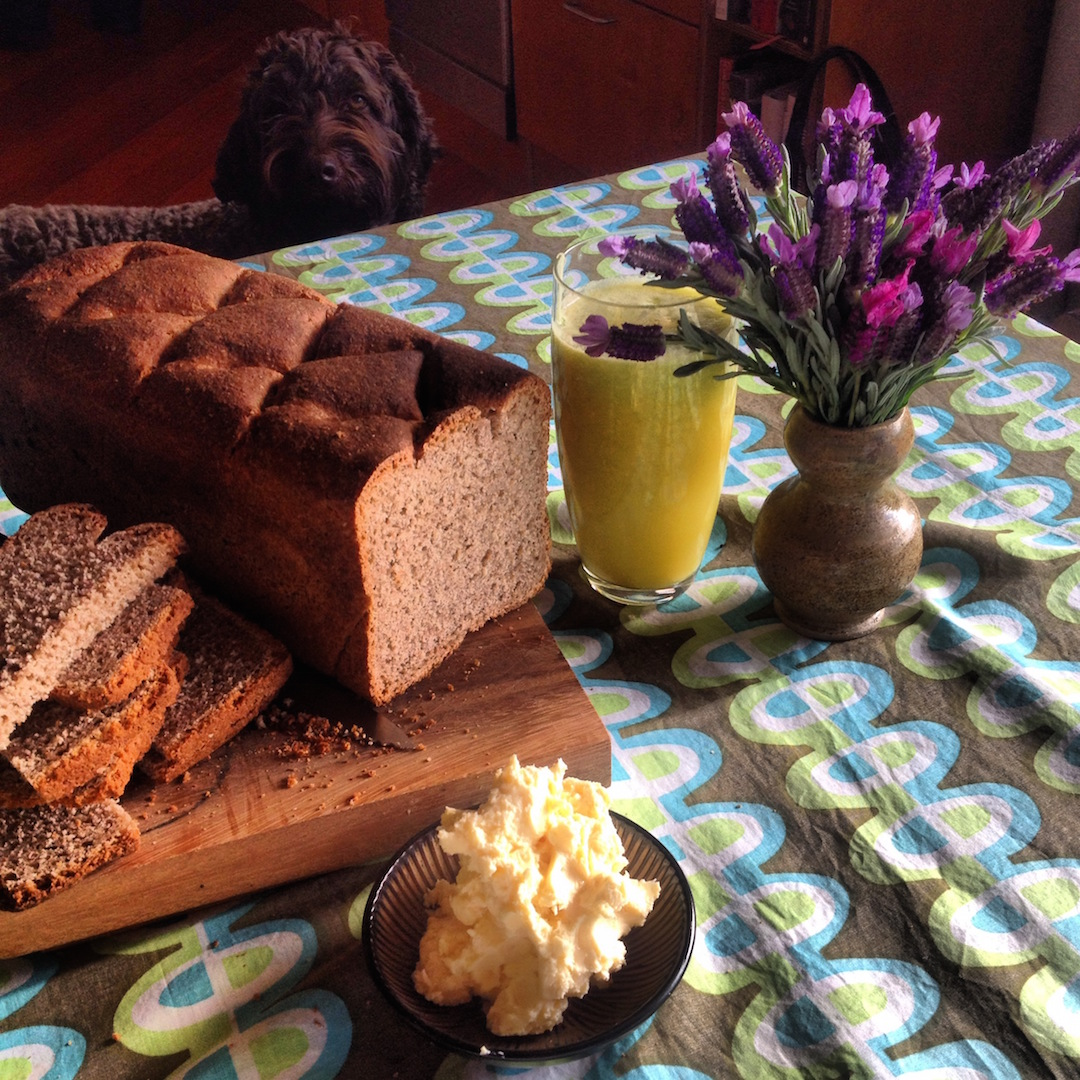 Bread from Mondo Organics classes and Bear in view
